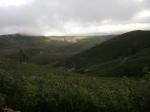 Vistas Desde Sierra Del Pimpollar