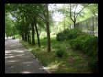 Entrada al Parque del Príncipe