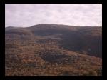 Cerezos del Valle del Jerte