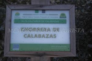 Cartel de Chorrera de Calabazas