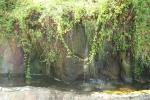 Fuente del Parque de los Pinos