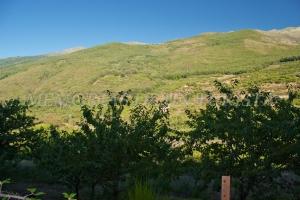 Monte en Tornavacas