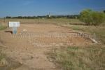Excavaciones arqueológicas del proyecto Alba Plata