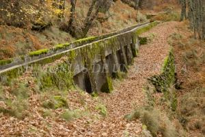 Lugar del enterramiento de hojas