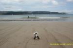 En la Playa de Area en Viveiro