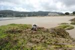 En los acantilados de la Playa de Area en Viveiro