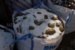 Piedras cubiertas de nieve