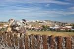 Desde el Fuerte de Santa Luzia, Elvas