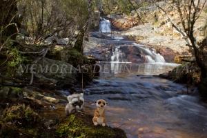 Mery y Pepe en la Cascada