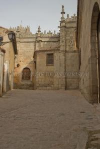 Alrededores de la catedral