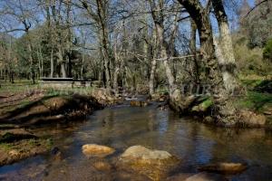 Río en el Merendero de Los Horcones