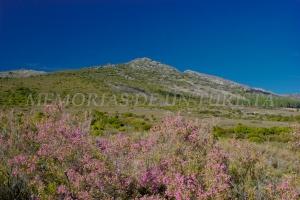 Sierra de la Palomera