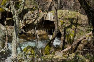 Puente de Los Horcones
