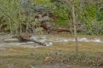 Río Ruecas por debajo del Viejo Pantano