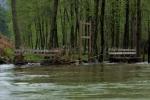 La Nutria desbordada de agua