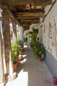 Macetas en la Calle Sevilla