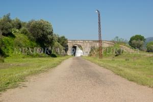 Puente de la vía