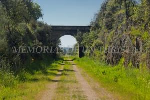 Tercer puente de la vía