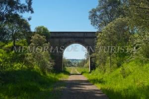 Cuarto puente de la vía