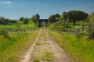 Quinto puente de la vía