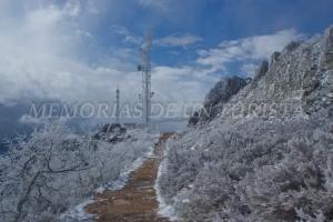 Paseando por el camino nevado