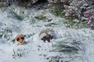 Mery y Pepe cubiertos de nieve