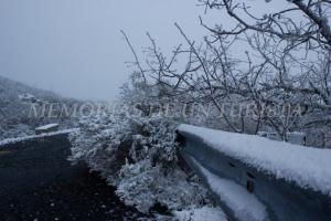 Quitamiedos cubierto de nieve