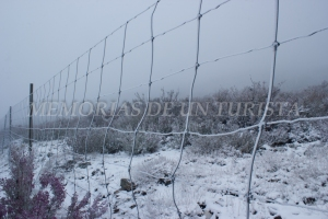 Alambrada nevada