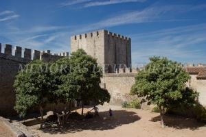 Entrando al castillo