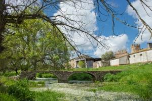 Puente en el Regato de la Cinchosa