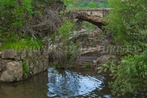 Puente antiguo del río Guadarranque