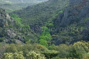Valle del Guadarranque