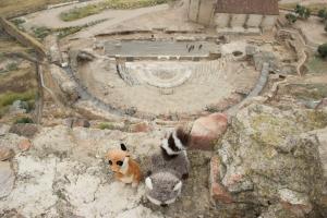 Mery y Pepe desde el castillo de Medellín