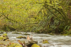 Mery y Pepe en el Río Narcea
