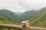 Mery y Pepe en la Reserva Integral de Muniellos