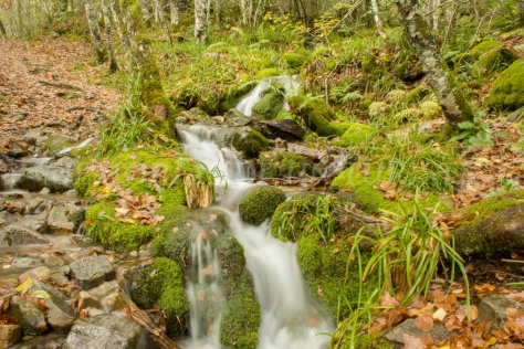 Cascada (fin de mi ruta)