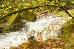 Mery y Pepe en una cascada en el Río Muniellos