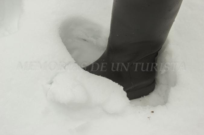 Varios centímetros de nieve