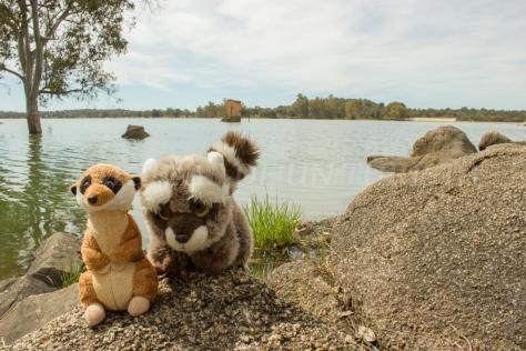 Mery y Pepe en el Pantano de Valdesalor