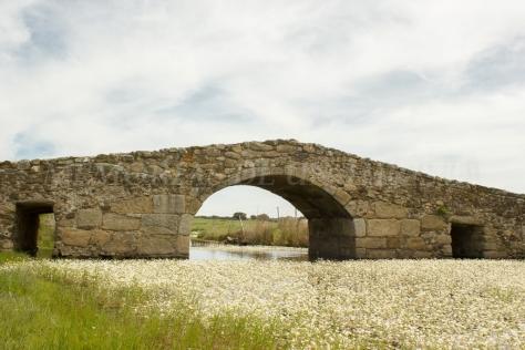 Puente Romano de Santiago de Bencáliz