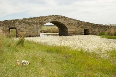 Mery y Pepe en el Puente Romano de Santiago de Bencáliz
