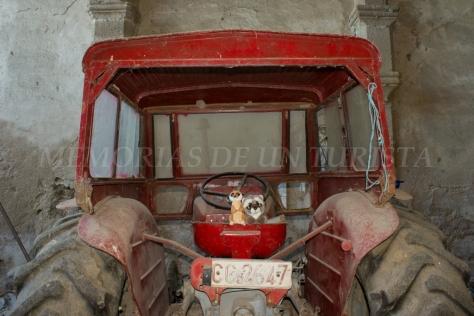 Mery y Pepe en el tractor