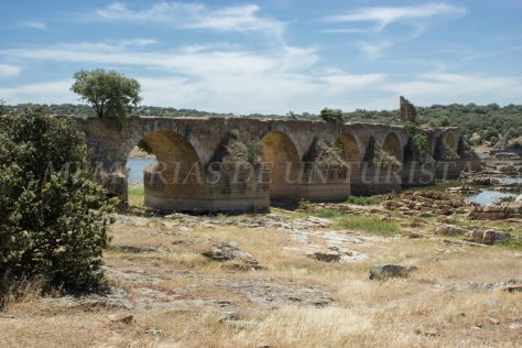 Puente Ayuda