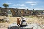 Mery y Pepe en el Puente Ayuda, entre Olivenza y Elvas