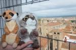 Mery y Pepe desde las Torres Blancas de la Iglesia de la Preciosa Sangre (Cáceres)